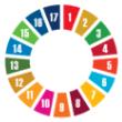 un 17 sustainable development goals sdgs wheel